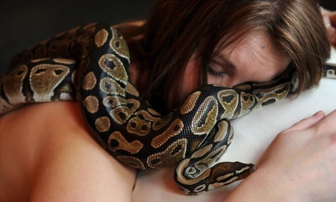 python and woman