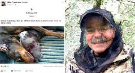 hunter killed dogs