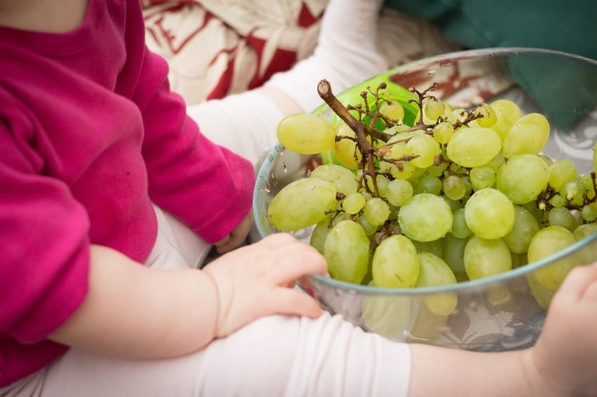 grape and young child