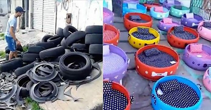 old tires cozy beds for strays