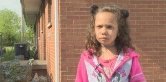 6-year-old lunch shamed