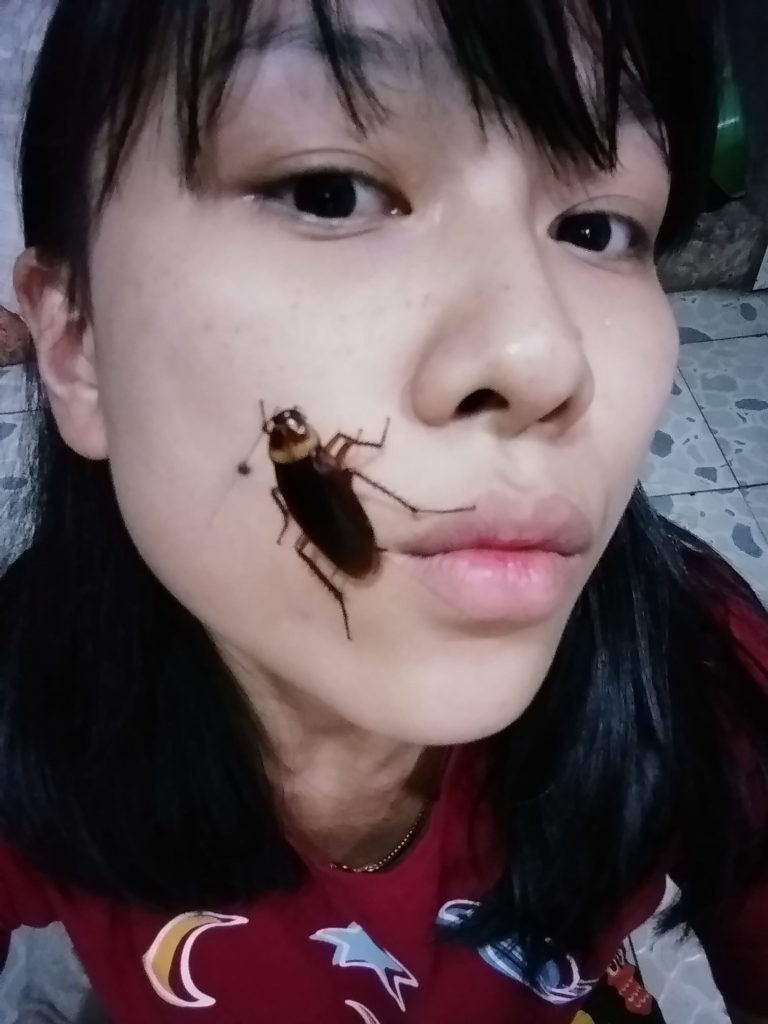 Cockroach On Face Challenge