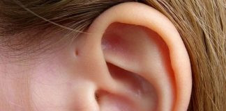 hole above your ear