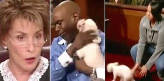 Judge Judy Stolen Dog